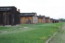 Auswitch Concentration Camp (3)